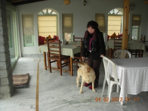 In the dining room of the Colonel's Resort, with Frisky, a wonderful Labrador Retriever