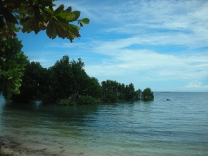 A private piece of the wonder that is the island of Siquijor