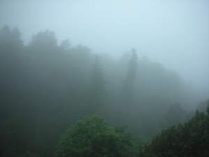 The Crags in Deep Rain