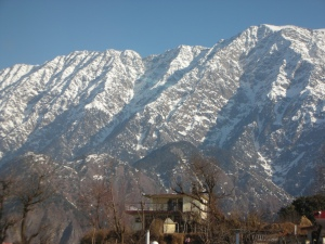 Snow Crest Inn, Dharamsala:  When self opened her curtains in the morning, this was the view that greeted her.
