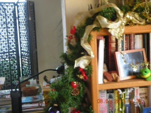 This is Bookcase # 2 in the dining room.  Speaking of which . . .  time for more of the book tabulation project!