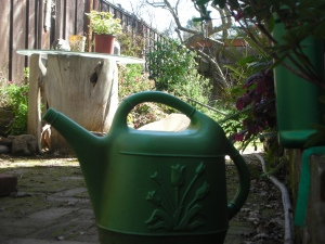 Self's trusty green watering can.  It's either from Orchard Supply or Target.  She bought it at least 20 years ago.