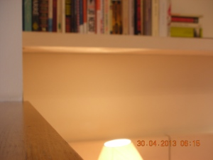 The bookshelf is directly over her bed.