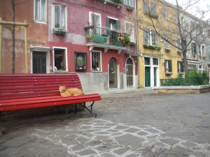 The Cat, the Red Bench, the Empty Street, Island of Murano, April 2013