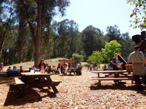 "The Picnic Grounds at Cal Shakes, just before the 4 p.m. performance of ""Romeo and Juliet"""