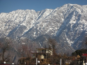 View from self's room at the Snow Crest Inn, Dharamsala, January 2012