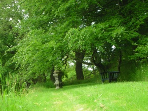 On the Grounds of Hawthornden, southern Scotland