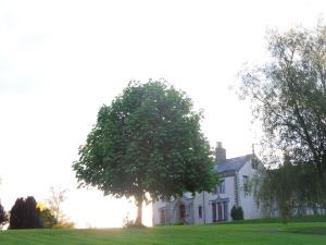 The Main House, Tyrone Guthrie Centre, Annaghmakerrig