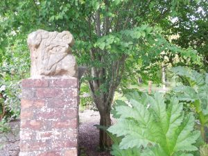 An old stone lintel next to a very big fern: on the grounds of the Tyrone Guthrie Centre