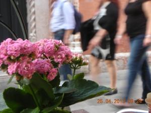 Sidewalk Café, Venice, April 2013