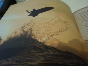 A Book on Cooking AND Surfing; from a Coffee Shop in Sligo, Ireland