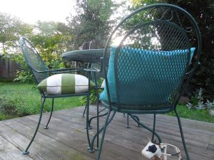 2 Chairs, Backyard