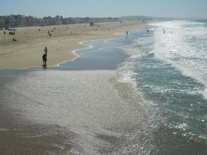 The first time self saw Venice Beach: September 2014