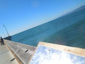Venice Beach Pier, November 2014