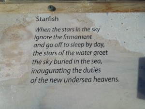 "English translation of Pablo Neruda's ""Estrellas"""