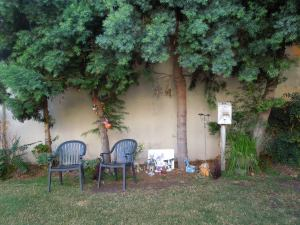 Ojai: Blending Halloween & Dia de los Muertos w/ Plastic Lawn Chairs = Super Minimalist!