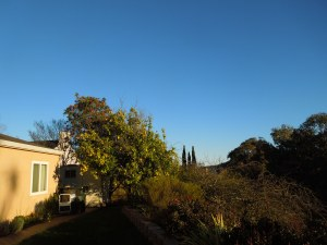 Mona and Randy's house, as seen from the backyard, in late afternoon, Christmas Day 2014