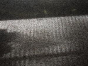 Morning Shadows, Self's Apartment in the Mendocino Art Center