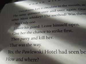 Reading Swedish mystery writer Hakan Nesser's WOMAN WITH BIRTHMARK (Grrrreat)
