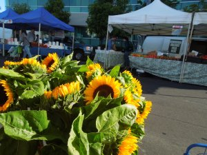 Redwood City Farmers Market: Saturdays throughout spring and summer
