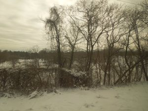 View From a Train: New York to Providence, RI