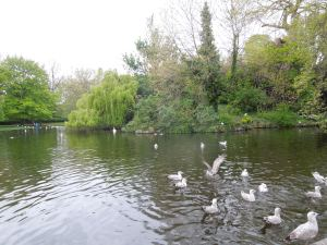 St. Stephen's Green, Dublin