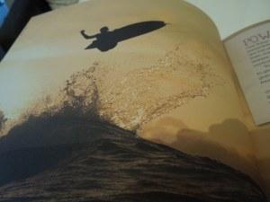 A Surfing Book Encountered In a Café in Sligo