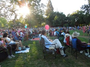 Concert in Stafford Park, Summer 2014