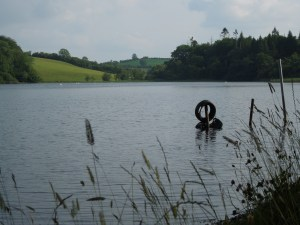 The Lake at Annaghmakerrig, July 2015