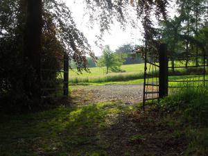 The Gate to the Meadow