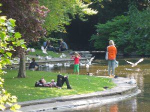 Saint Stephen's Green on Wednesday, 15 July 2015