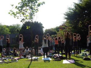 Of all the sights self thought she'd find in St. Stephen's Green today, a yoga class this large was not one of them.