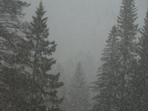 Banff, Spring 2015