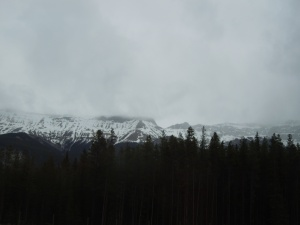 On the way to Lake Louise, Alberta, Canada: May 2015