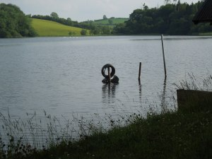 The Lake at Annaghamkerrig, Ireland