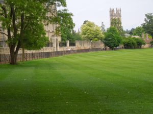 Oxford University, May 2014